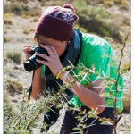 My brother photographing the Acacia bush