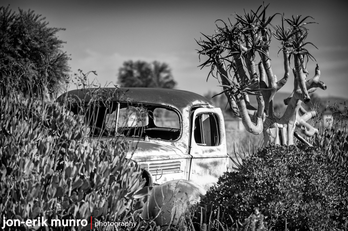 An old car amongst the bushes